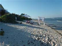 Ocean Paradise Cottage