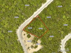 CAYMAN BRAC LAND, DOLPHIN ESTATE PARCEL 460