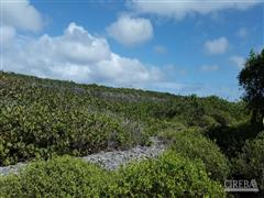 BRAC BLUFF TOP 69 ACRES!