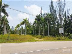 ROYAL PALMS ESTATES DEVELOPMENT