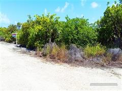 LITTLE CAYMAN EAST END LOT