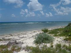 NORTH SIDE OF LITTLE CAYMAN